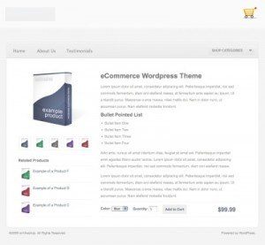 WP e-Commerce Theme Single Product