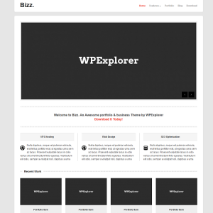 Free WordPress Theme Bizz