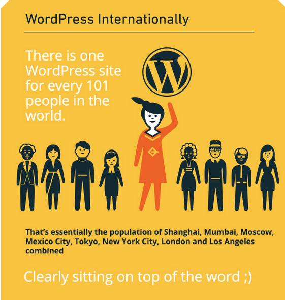 1-for-101-people-use-wordpress
